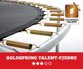 BERG Talent