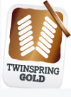 Trampoline twinspringgold